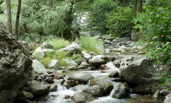 Giornata sui deflussi ecologici nel distretto del fiume Po