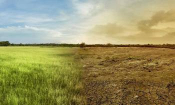 Settimana Laudato sì – Testimonianza dal Gruppo Esperto Azione Clima